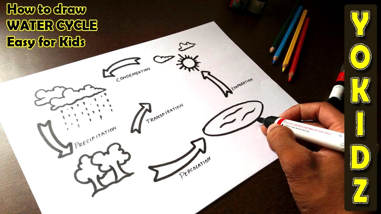 How To Draw Water Cycle Easy For Kids Youtube