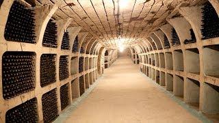 The Biggest Wine Cellar in the World: Milestii Mici Winery