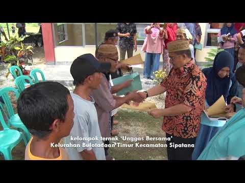 Peresmian Pemanfaatan Rumah Potong Hewan (RPH) Kelurahan Tenilo Kecamatan Kota Barat