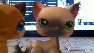 Кавайные новости: Стоячие кот и кошка lps, а так же посылка с 49 петами))