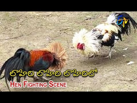 Lahiri Lahiri Lahiri Lo Telugu Movie   Hen Fighting Scene   Aditya   Hari Krishna   ETV Cinema