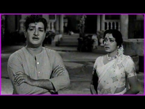 NTR Super Hit Video Song - Ramu Telugu Movie Video Song | NTR | Jamuna