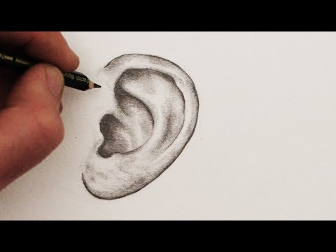 How To Draw Ears: Step By Step