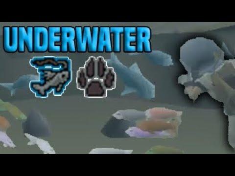 Testing Drift Net Fishing (Underwater)