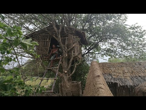 Primitive Daily Life : Build houses on trees (full video)