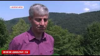 В селении Булгат Ирзу Ножай Юртовского района открыли новый водопровод протяженностью в 35 км