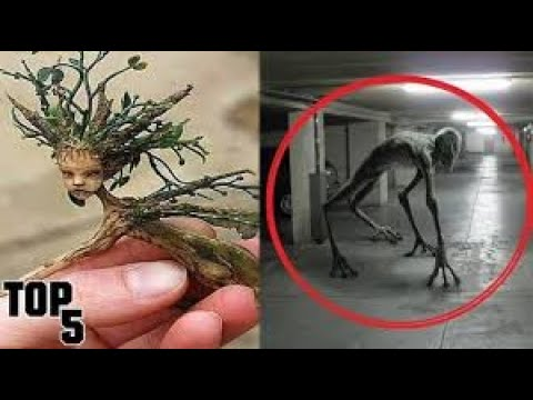 Top 5 Scariest Creatures Ever Caught On Tape 👻 Demons Caught On Camera