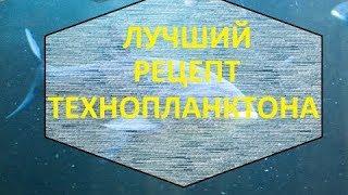 Изготовление технопланктона в домашних условиях / Production of technoplankton