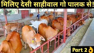 देसी साहीवाल गो पालक से ऐक भेट|Interview with Sahiwal cow Dairy Farmer|Desi cow dairy farm in india