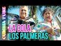 Los Palmeras La Cola Video Oficial ESTRENO Cumbia Tube mp3