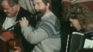 Video Star of Munster & Bird on the Bush download MP3, 3GP, MP4, WEBM, AVI, FLV Desember 2017