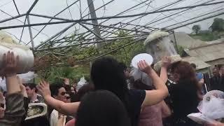 Армяно-Греческая свадьба 2