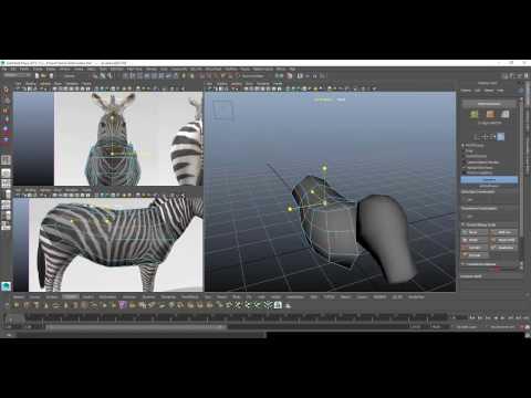 Mocca Animation Tutorial Modeling 3D Animal Zebra How to make animation