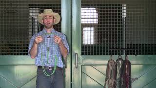 Rope Halters | How to select the best halter for your horse