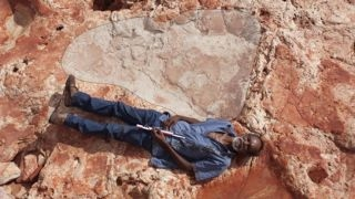 World's biggest dinosaur footprint discovered