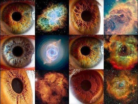 Вопрос: Какого цвета бывают глаза у собак?