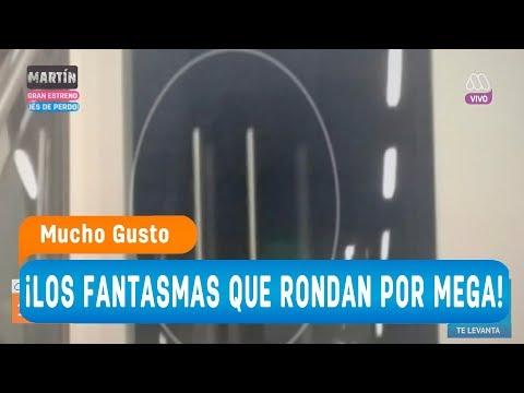 ¡Los fantasmas que rondan por MEGA! - Mucho gusto 2018