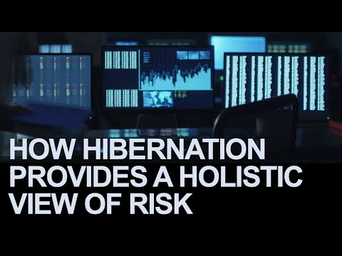 How Hibernation Provides a Holistic View of Risk