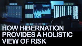 How Hibernation Provides a Holistic View of Risk