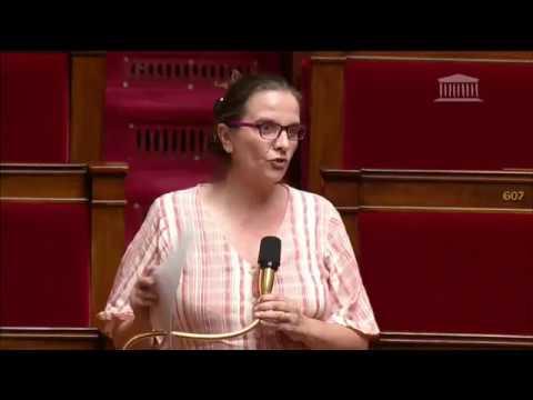 Caroline Fiat dénonce à l'Assemblée nationale la stratégie indécente des députés LREM