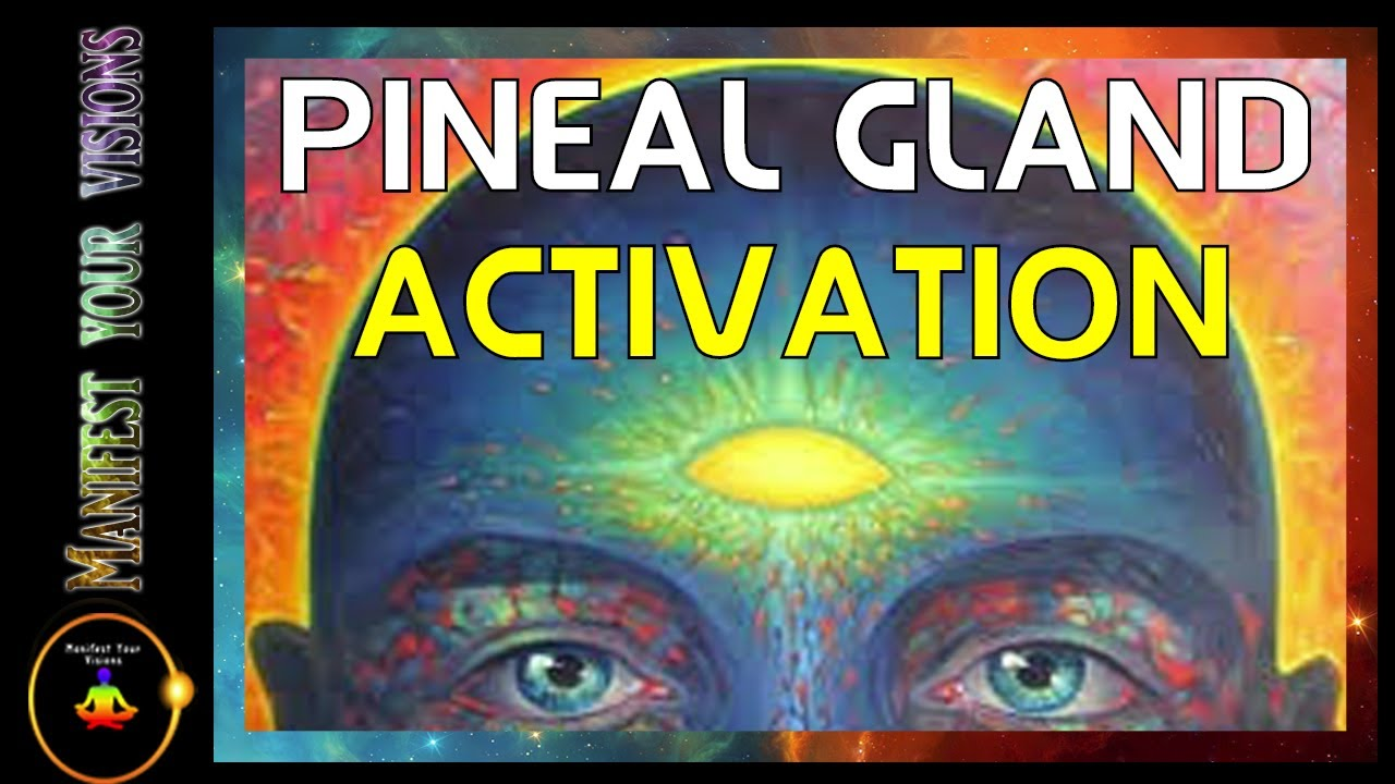 The Function Of Your Pineal Gland Third Eye And How To Use It For