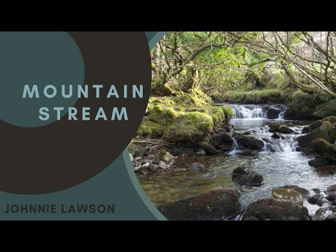 Relax 8 Hours of Birds Singing and Water Sounds-Nature Sound Relaxation-Relaxing Birdsong