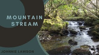 Nature Sounds Woodland Stream Babbling Water And Relaxing Bird
