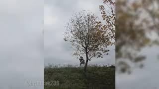 Moto craazy 2018