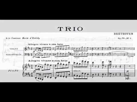 Beethoven trio in D major Op. 70 n. 1 - 1-3 with score