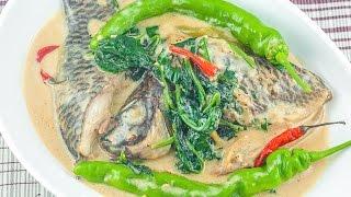 Ginataang Tilapia (Tilapia Cooked in Coconut Milk)