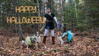 Halloween Hike and Cook