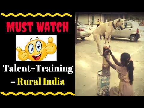 Amazing girl and dog in india viral video