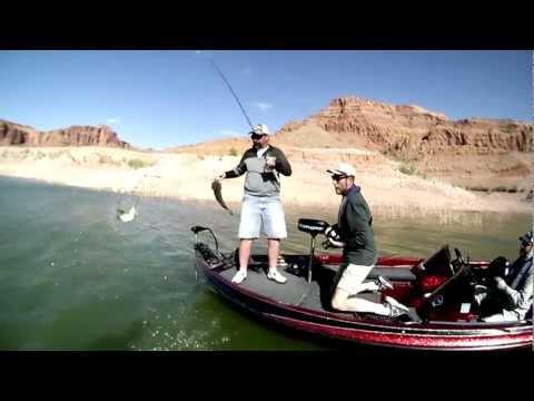 Lake Powell: Fishing Striper Boils