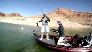 Lake Powell: Fishing Striper Boils