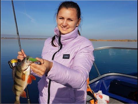 ловля окуня с лодки на Маныче!     Чемпионат Новочеркасска 2019г!