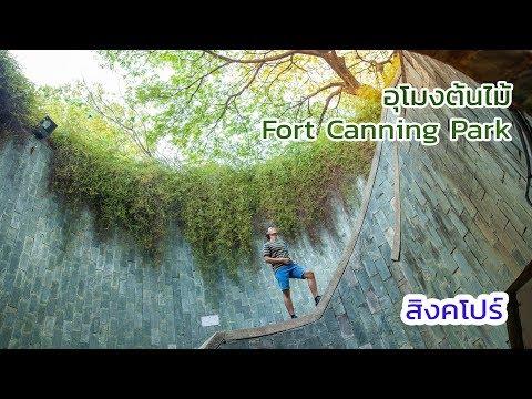 สิงคโปร์  EP.5 อุโมงต้นไม้ Fort Canning Park
