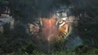 harimau lembah harau.m4v