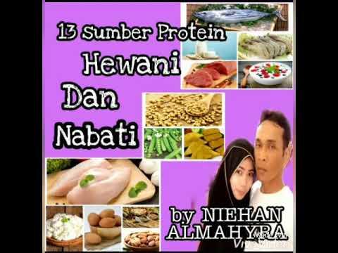 Makanan Mengandung Protein Hewani Dan Nabati 13 Sumber Makanan