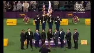 Jersey Boys Broadway Sing National Anthem At Westminister Kennel Club