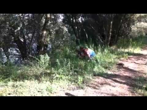 Mario l'algerino cattura faggiano a mani nude