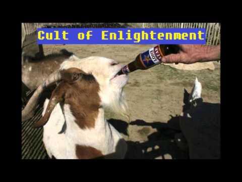 Cult of Enlightenment #1: Liberals, Conseratives, Religion & a Dolphin Movie
