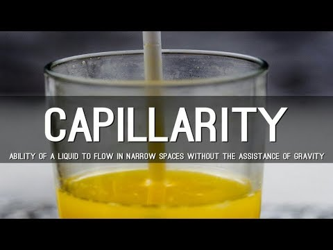 Capillarity and its real time applications / Tamil / Engineering concepts