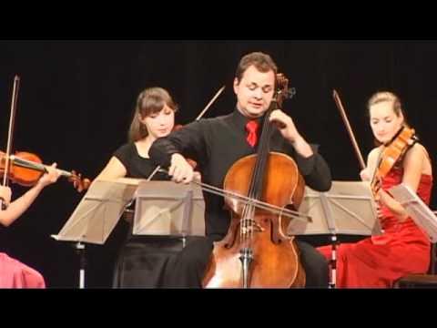 Beladona Quartet & S. Svestka (Čmelák)