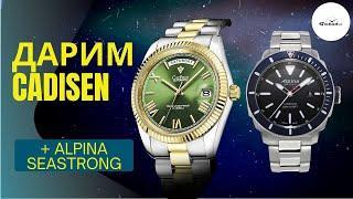 Насколько хороши Cadisen C8185 с Aliexpress? Alpina Seastrong: топ-дайвер до $1000