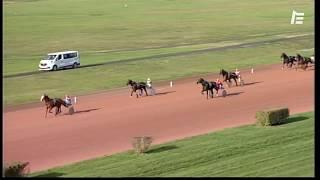Vidéo de la course PMU PRIX SOCIÉTÉ YOU