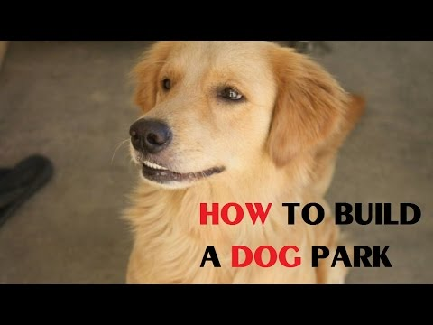How To Build A Dog Park