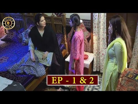 Haiwan Episode 1 & 2 - Top Pakistani Drama