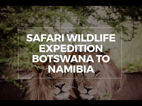 Safari wildlife expedition Namibia to Botswana