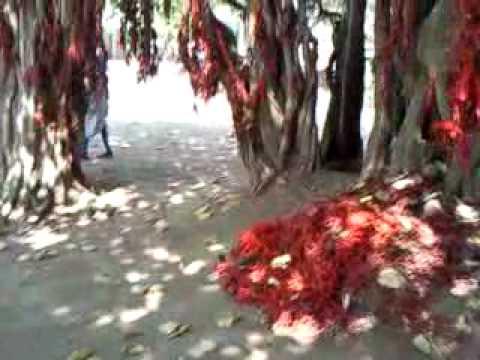 Gorakhnath - YouTube
