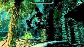"""Game Fails: Skyrim """"She"""